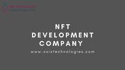 A well standared NFT Development Company